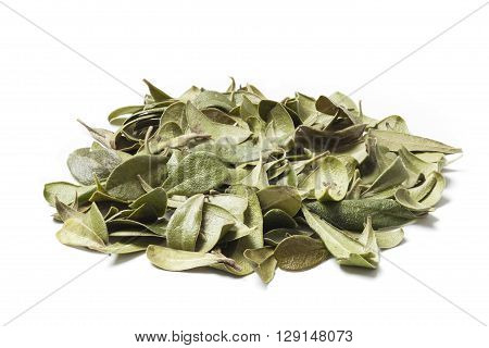 Bearberry leaves isolated on white background. Bearberry (Arctostaphylos uva-ursi) is a type of plant of the genus Arctostaphylos . The primary activity of bearberry is antiseptic and slight diuretic effect. Apply in cases of chronic cystitis and pyelitis