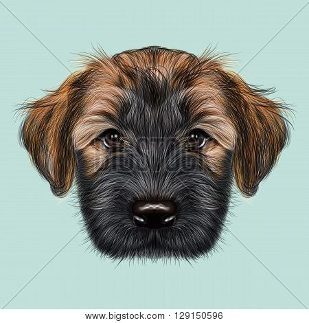 Illustrated Portrait of Briard puppy. Cute face of fluffy dog on blue background