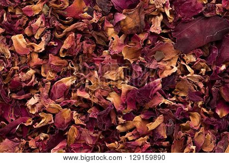 Macro closeup background texture of Organic Damask rose petals (Rosa damascena).
