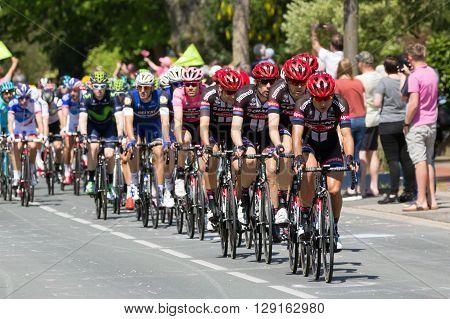 Cyclists Giro Italia