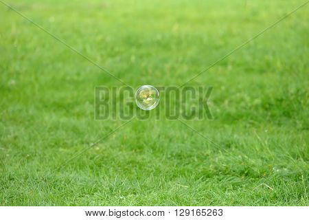 Flying Soap Bubbles Against The Grass Background With Relection Of The Trees And Sky