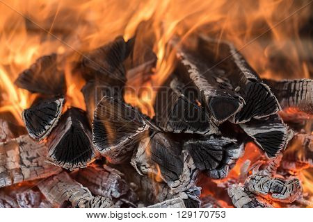 the fire on the wood, charred wood, ash
