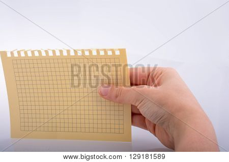 Hand holding a sheet of checked paper on a white background