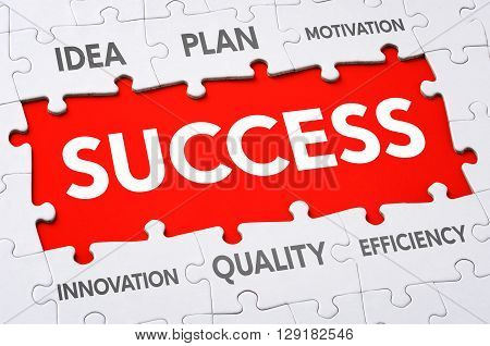 Text on puzzle pieces - Success written in the center