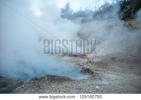 Columns of steam escaping from the earth in the area of Monument Geyser Basin Yellowstone National Park Wyoming