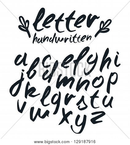 Vector handwritten brush script. Isolated on white background