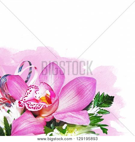 orchid with chrysanthemums on pink watercolor background