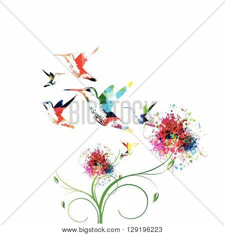 Vector illustration of colorful flowers with hummingbirds