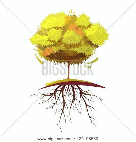 Single autumn tree with root on white background retro cartoon flat isolated vector illustration