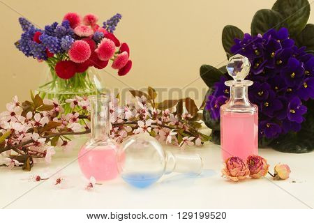 Dry flowers and glass vials  of tincture or oil, aromatherapy concept