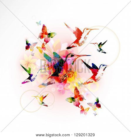Vector illustration of colorful hummingbirds on floral background