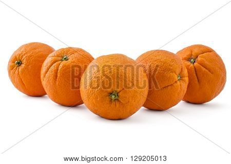 File raw organic oranges arranged in line isolated on white background