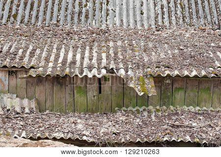 Slate tiled roof of old grunge wooden shed