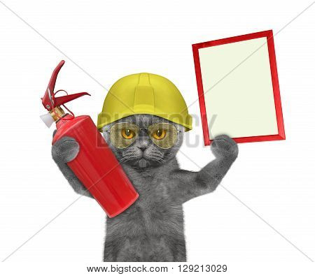 firefighter cat is ready to work -- isolated on white