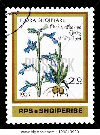 ALBANIA - CIRCA 1989 : Cancelled postage stamp printed by Albania, that shows Orchis albanica.