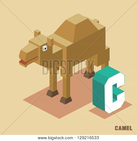 C for Camel Animal Alphabet collection. vector illustration