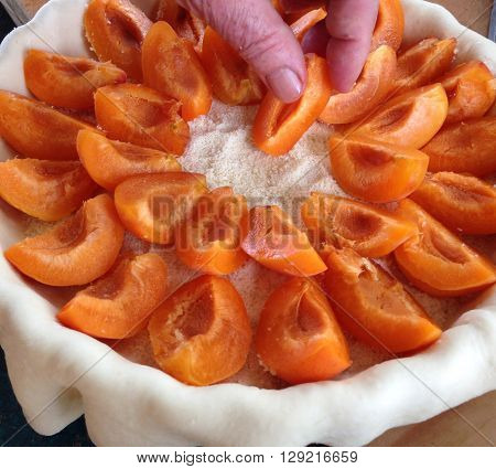 Home baking: making an apricot flan with sliced apricots