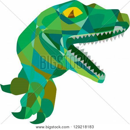 Low polygon style illustration of a raptor t-rex dinosaur lizard reptile breaking out of wall viewed from the side set on on isolated white background.