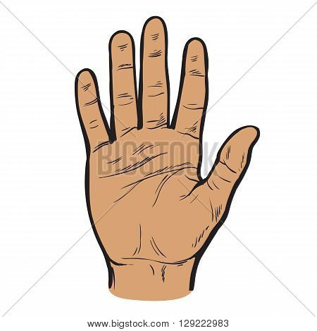 One hand. Hand showing five fingers. A welcome gesture. Stopping gesture. stop character. Opened palm of the hand. Painted hand. Contour arm. Illustration of five fingers.
