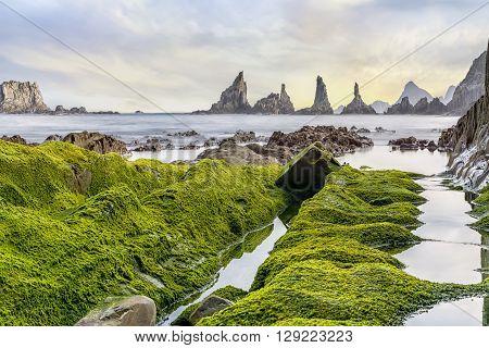 Sea rocks covered with moss in Gueirua beach, Asturias, Spain