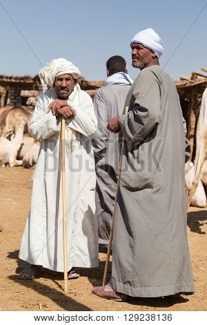 DARAW, EGYPT - FEBRUARY 6, 2016: Portrait of elderly camel salesmen with stick at Camel market.