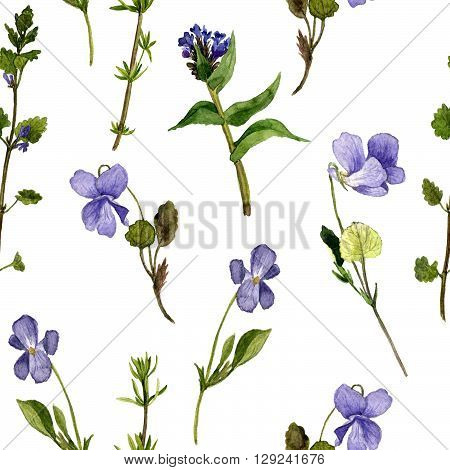 floral seamless pattern with watercolor drawing wild flowers, background with violets, painted  wild plants, botanical illustration in vintage style, hand drawn  illustration