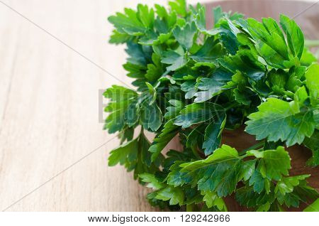 Organic fresh bunch of parsley closeup on a wooden rustic table, selective focus.