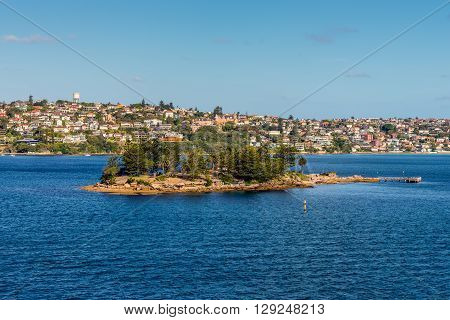 Sydney Australia - November 12 2014: Shark Island viewed from Sydney Harbour New South Wales Australia.