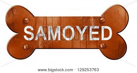 Samoyed, 3D rendering, rough brown dog bone