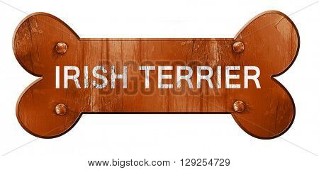 Irish terrier, 3D rendering, rough brown dog bone