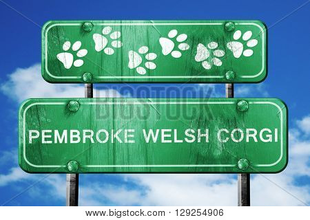 Pembroke welsh corgi, 3D rendering, rough green sign with smooth