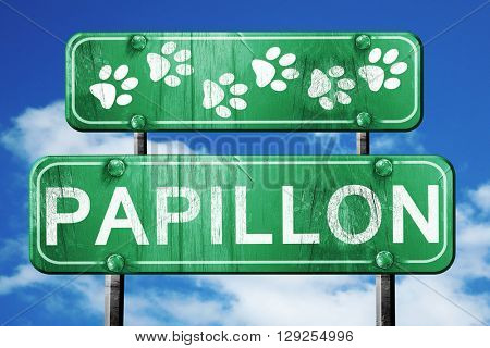 Papillon, 3D rendering, rough green sign with smooth lines