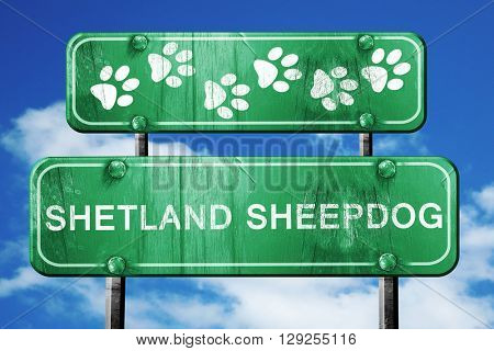 Shetland sheepdog, 3D rendering, rough green sign with smooth li