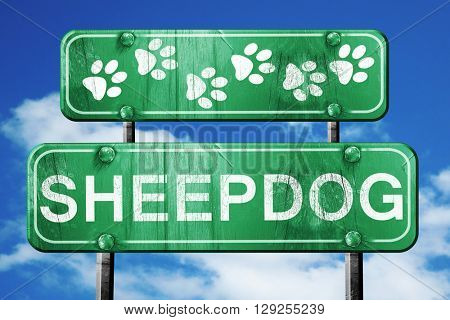 Sheepdog, 3D rendering, rough green sign with smooth lines
