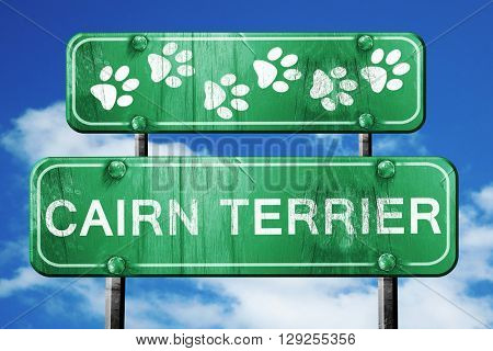 Cairn terrier, 3D rendering, rough green sign with smooth lines
