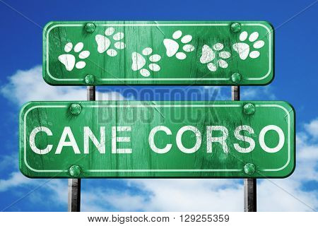 Cane corso, 3D rendering, rough green sign with smooth lines