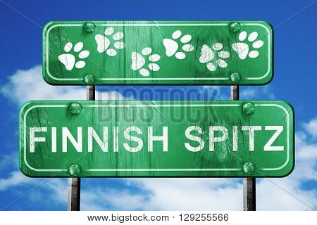 Finnish spitz, 3D rendering, rough green sign with smooth lines