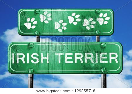 Irish terrier, 3D rendering, rough green sign with smooth lines