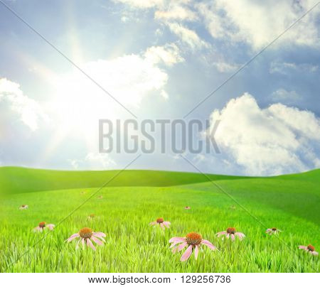 Beautiful summer landscape with green hills and blue sky