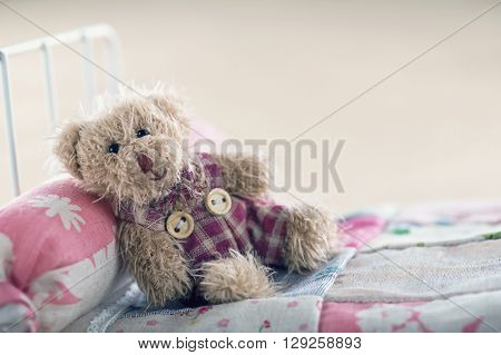 Teddy bear in a toy ber relaxing concept