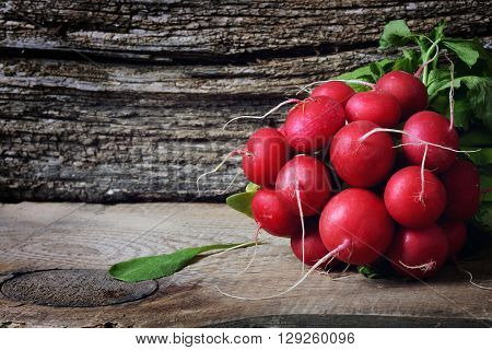 large bunch of fresh radish on dark boards closeup