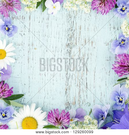 Summer wild flowers with light blue wooden background