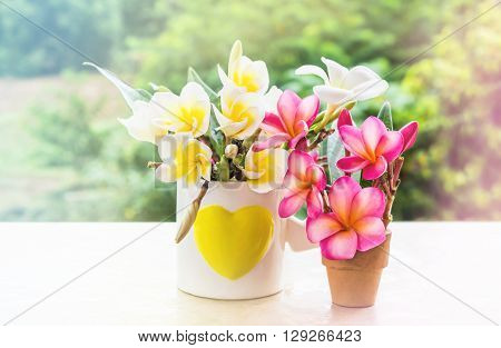 Soft Colour Mood Flowers Bunch Decorate In Heart Pattern Cup And Small Vase On Nature Tree Backgroun