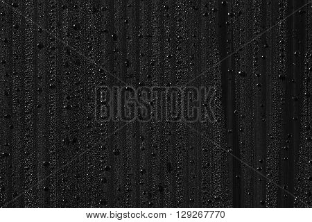 Water drops on the background. Condensate. Black background. Water drops background.