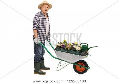 Mature gardener pushing a wheelbarrow full of gardening equipment isolated on white background