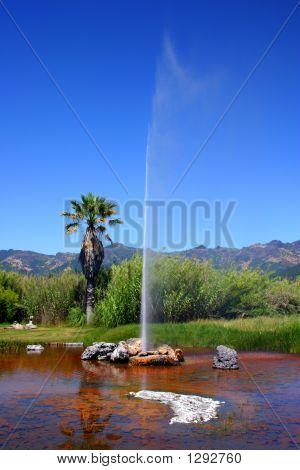 Calistoga'S Old Faithful Geyser, California