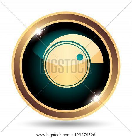Volume Control Icon
