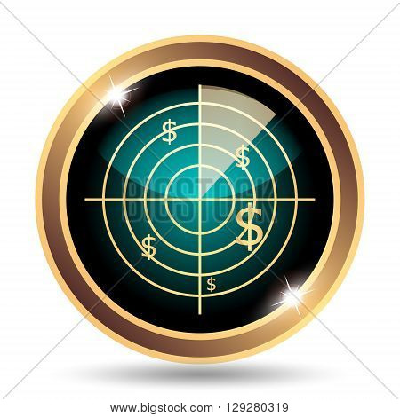 Radar Searching Money Icon