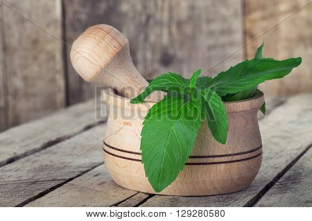 Fresh herbs in a mortar. Fresh mint wooden mortar and pestle on the old table