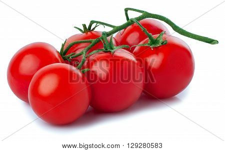 Ripe fresh cherry tomatoes on branch isolated on white background. Juicy organic cherry tomatoes